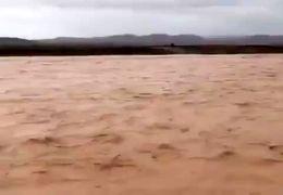 سیل در نزدیکی محوطه تاریخی پاسارگاد و آرامگاه کوروش