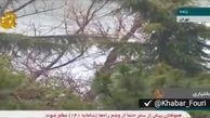 فیلم هشدار در خصوص طغیان رودخانههای تهران