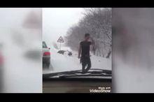 گرازهای گرسنه به حاشیه جاده هجوم  آوردند+ فیلم