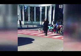 سگی که برای رد  شدن کودکان از خیابان خودروها را مسدود می کند+ فیلم